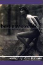 Berman Best Gay Stories 2015